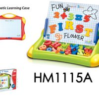 Write N' Draw Magnetic Learning Case