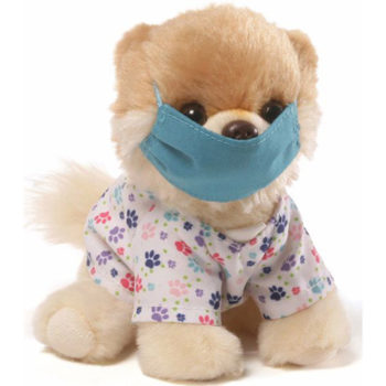 "Gund - Itty Bitty Boo Scrubs Stuffed Dog 5"" Plush"